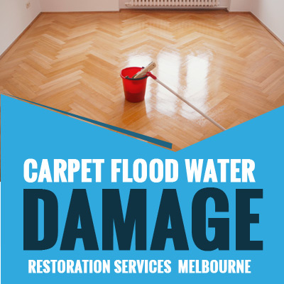 Carpet Flood Water Damage Restoration Beauville Services