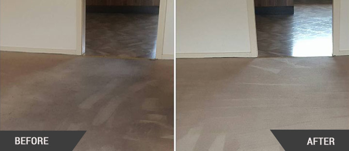 Professional Carpet Cleaning Ringwood North