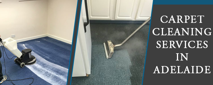 Best Carpet Cleaning Services Netley