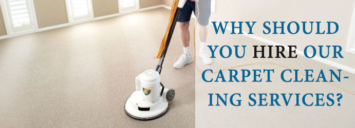 Carpet Cleaning Service in Garie